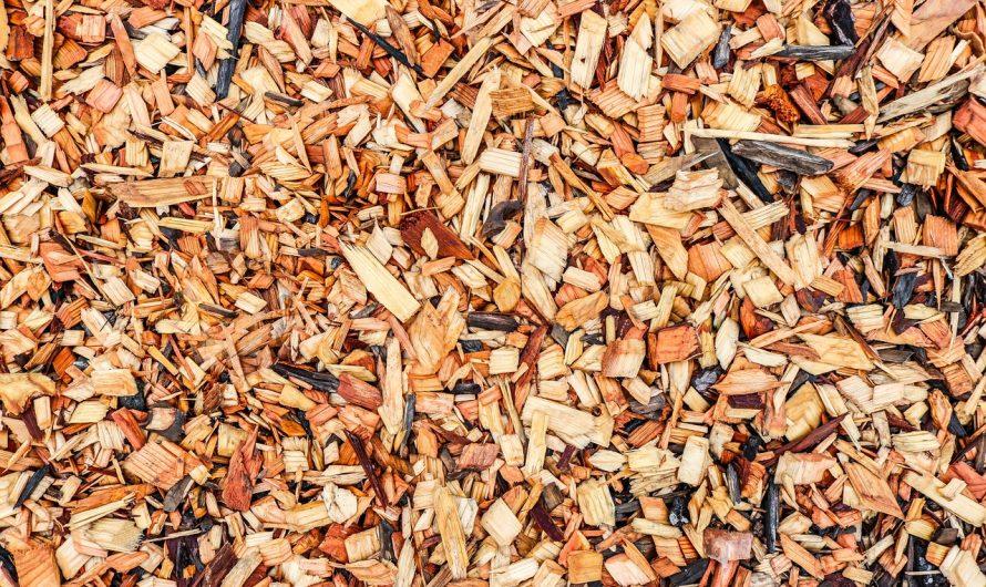 Choisissez l'un des meilleurs broyeurs de branche pour votre maison!